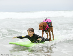 surf dog autism