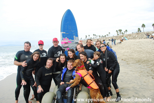 surf dogs with team