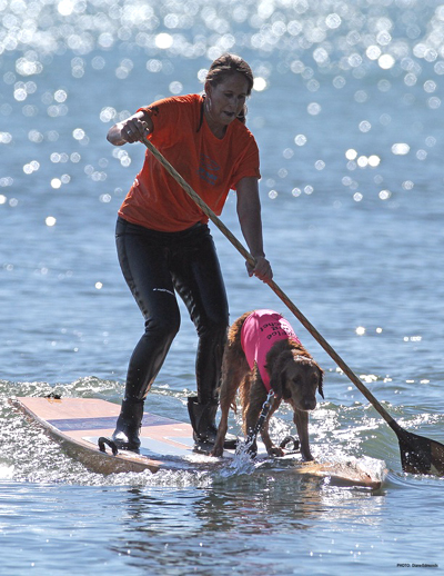 surf dog SUP stand up paddle board