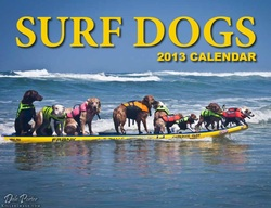 socal surf dogs surfing calendar