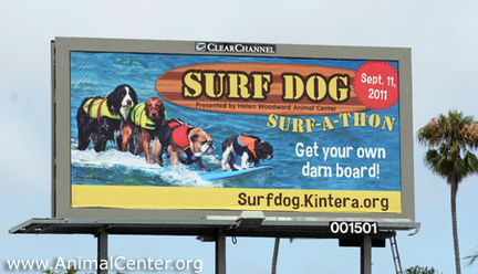 so cal surf dogs on billboard