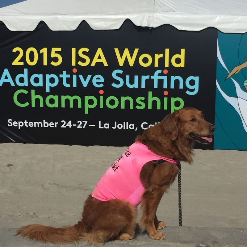 ISA World Adaptive surfing championship