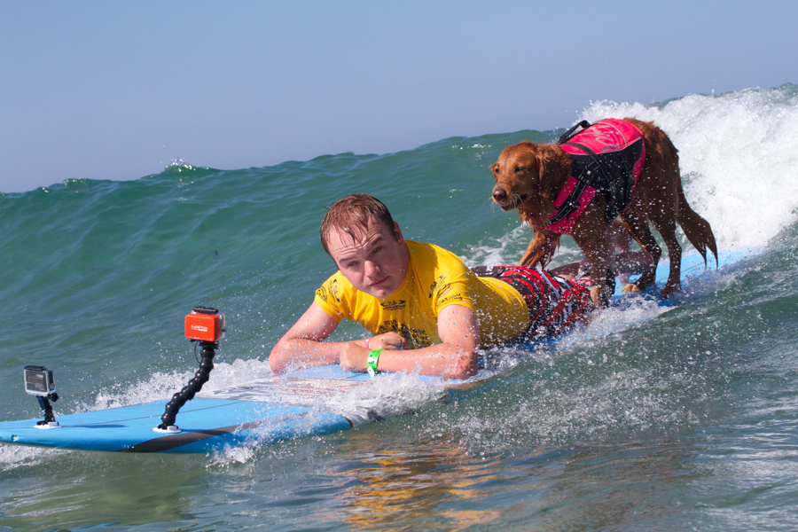 ISA world adaptive surfing championship surf dog