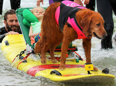 Girl with SMA catches waves with dog