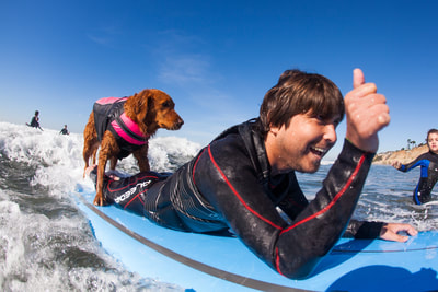 Happy surfer with dog
