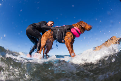 Veteran with PTSD surfs with Ricochet