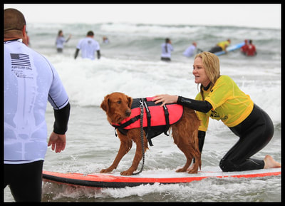 Disabled surfer with dog