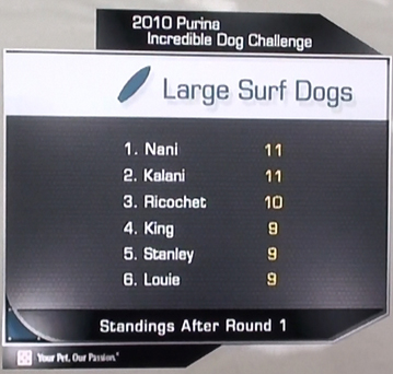 surf dog televised Purina