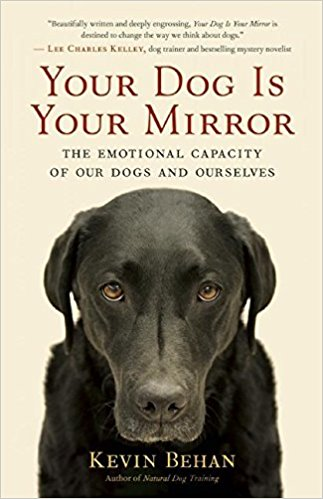 Mirroring in dogs 2