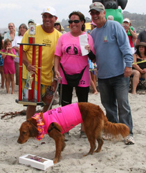 surf dog competition winner