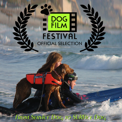 Ricochet in dog film festival