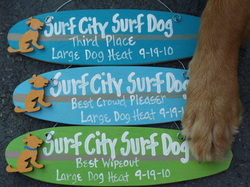 surf city surf dog awards