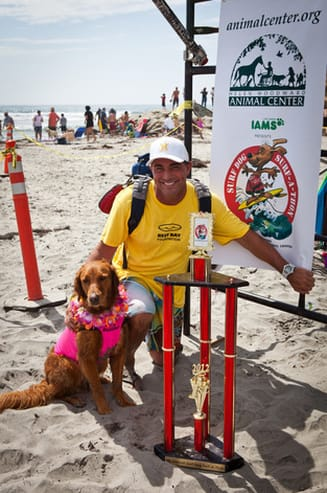 Surf dogs competition