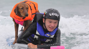 Dog surfing with boy