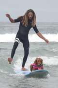 Surfing dog Rob Machado