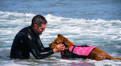 Canine assisted surfing