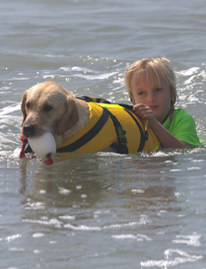 water rescue dog 3