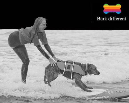surf dog be true to yourself