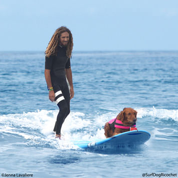 Surf Dogs and Rob Machado