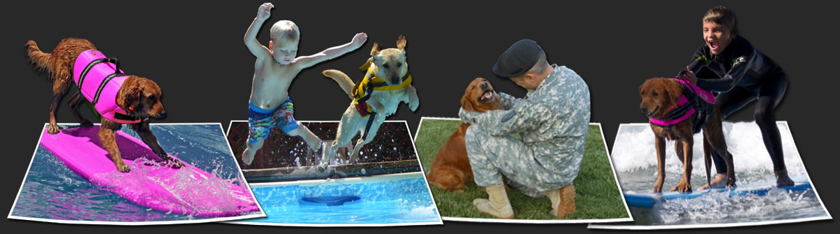 Surf Dog Ricochet - Surfing dogs, therapy dogs, dog surfing competition