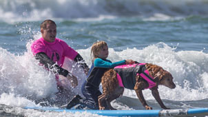 Dog surfing with child