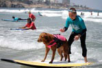 surfing dog autism