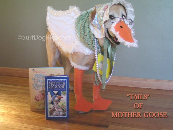 Dog costume mother goose