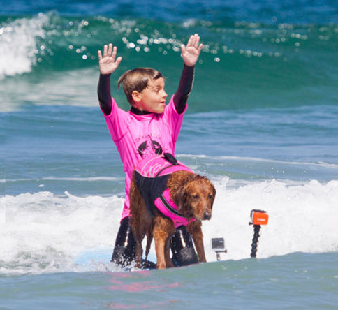 Surfing dogs and autism